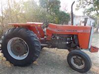 Trator Massey Ferguson 285 4x2 ano 83