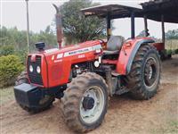 Trator Massey Ferguson 283 4x4 ano 08