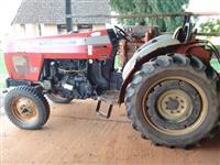 Trator Massey Ferguson 265 (Fruteiro)  4x2 ano 08