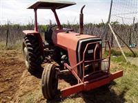 Trator Massey Ferguson 265 (Motor e Câmbio Novo!) 4x2 ano 86