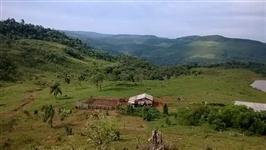 Fazenda 240 hectares
