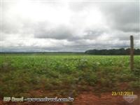 Fazenda em Município de Nova Xavantina MT