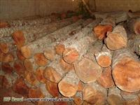 Madeira Cedro Australiano torete/prancha 18m³ 15 anos