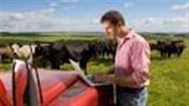 Pericia e Avaliação Imóvel Rural - AM, PA, AC, RO, RR