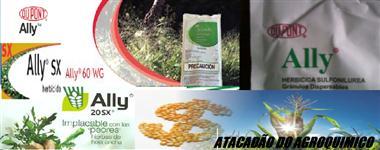 ALLAY HERBICIDA (Metsulfuron metil 60% WG WP )