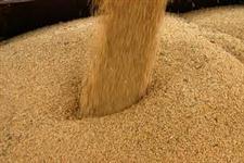 Compro farelo de soja para exportação