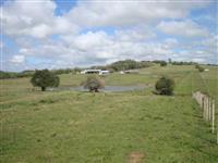 Arrendo fazenda para pecuária