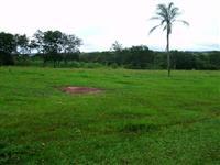 Fazenda 858 ha Jaraguari MS