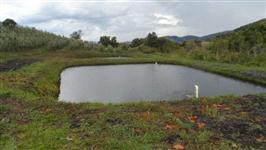 Fazenda produtiva e paraíso ecológico