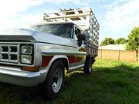 Ford F-1000 ,turbinada,carroceria de madeira c/ gaiola - 1984 - PERFEITA