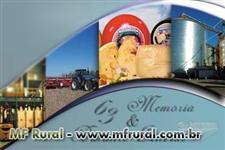 Produtos lácteos para exportação da Argentina.