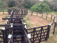 Vendo Fazenda em Canhoba - SE