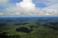 ÁREA PARA COMPENSAÇÃO AMBIENTAL - BIOMA AMAZÔNICO