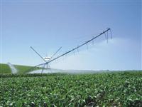 Pivo Irrigação