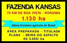 FAZENDA KANSAS RORAIMA