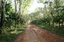 Fazenda região de Barra do Bugres 618ha