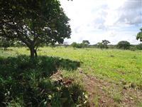 Fazenda - Terra de chapada 500 ha