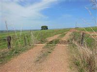OPORTUNIDADE DE NEGOCIO - Fazenda catalao 485. ha