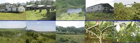 Fazenda de Cacau - Bela Vitória - Una, Bahia, Brasil