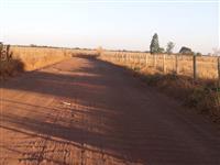 Fazendinha em campinorte goias