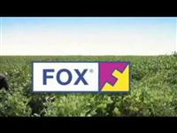 FOX ® - [Fungicida]