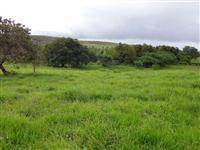 Fazenda Entre Rios - BA