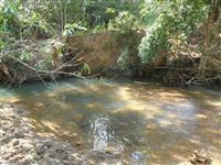 Fazenda em Goianésia Goiás, 24 alqueires, super barata