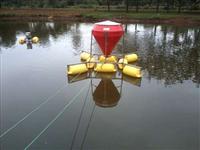 Alimentador Automático Flutuante Peixes