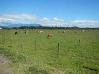 "Fazenda em Araguari - MG ""Florestina"" (50 km de Uberlândia)"