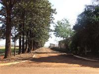 12 Alqueires em Ibirarema, interior de SP