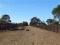 Fazenda no Mato Grosso