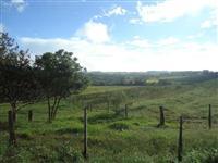 Fazenda Região de Franca - Porteira fechada - 52,3 Ha