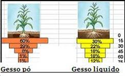 Gesso Agrícola Líquido