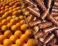 Polpa Citrica (Ensacada ou a granel)