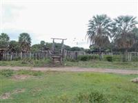 Fazenda em Corumbá (MS) com 2.590 hectares – Ref. 753