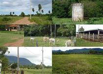 Fazenda com 7.350 hectares - Corumbá/MS – Ref. 744