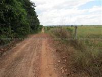 Fazenda com 3600 alqueirão - Paragominas/PA – Ref. 742