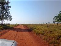 Fazenda com 980 hectares - Jaraguari/MS – Ref. 310