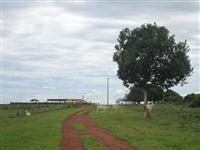 Fazenda com 13.555 hectares - Vila Rica/MT– Ref. 734