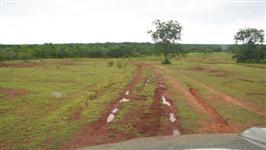 Fazenda em Piauí com 59 mil hectares – Ref. 731