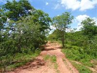 Fazenda com 2.508 hectares - Rondonópolis/MT – Ref. 721