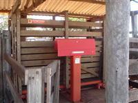 Fazenda com 440 hectares - Costa Rica/MS – Ref. 711