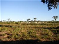 Fazenda com 750 hectares - Alto Boa Vista/MT – Ref. 709