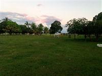 Fazenda com 1.400 hectares - Terenos/MS – Ref. 218a