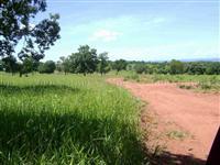 Fazenda com 876 hectares - Aquidauana/MS – Ref. 205