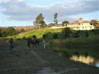 Fazenda 140 alqueires SP - Serrano/MG – Ref. 696