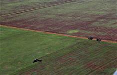 Fazenda com 16.250 hectares - Primavera do Leste/MT – Ref. 681