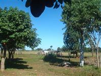 Fazenda com 150 hectares - Nova Alvorada/MS – Ref. 677