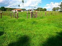 Fazenda com 1.208 hectares - Rochedo/MS – Ref. 676