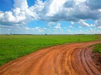 Fazenda com 3.000 hectares - Jardim/MS – Ref. 670